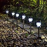 solar garden lights outdoor