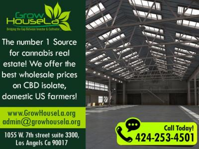 Wholesale CBD Isolates, directly from a US Farm!