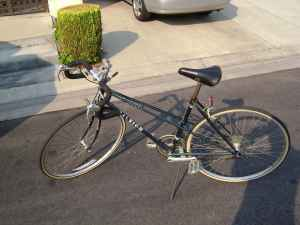 48cm Raleigh Road Bike (10 speed) - Perfect Condition - $155 (Anaheim)