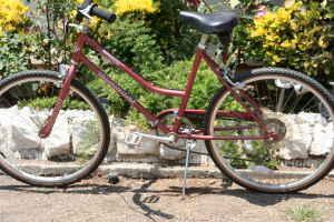 diamondback womans bike - $120 (venice)