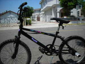Fox Elite Sx Very Cool Bmx Bike - $60 (L.A)