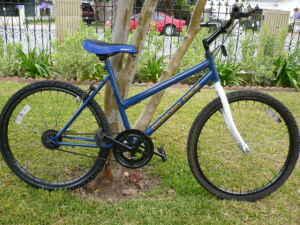Like New Diamond Back Adult Mt Bike $60 - $60 (Garvey Ave)