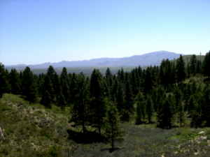 $35000 RETREAT TO BEAUTIFUL PRAIRIE IDAHO!!! (PRAIRIE IDAHO)
